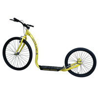 Luxury Adult Kick Bike (GS-003G)