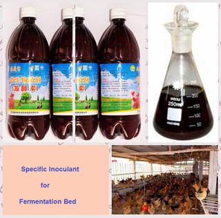 -海草生物有機接種物為做被發酵的河床