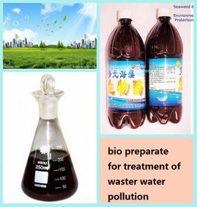 海草Bio Agent為Waste Water Pollution的Treatment