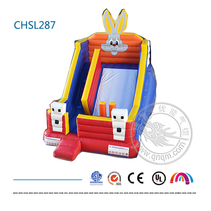 CHSL287 Rabbit slide (7).jpg