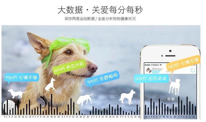 智能宠物项圈, 智能项圈, 宠物训练器-可监控宠物健康