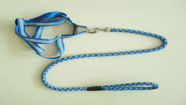 宠物牵引带, 自动牵引绳, 伸缩牵引绳, 狗狗牵引, 牵引绳-编织带,编织绳系列