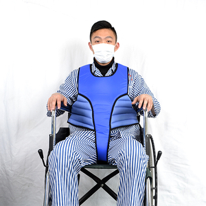 Wheelchair multi-purpose security constraint vest