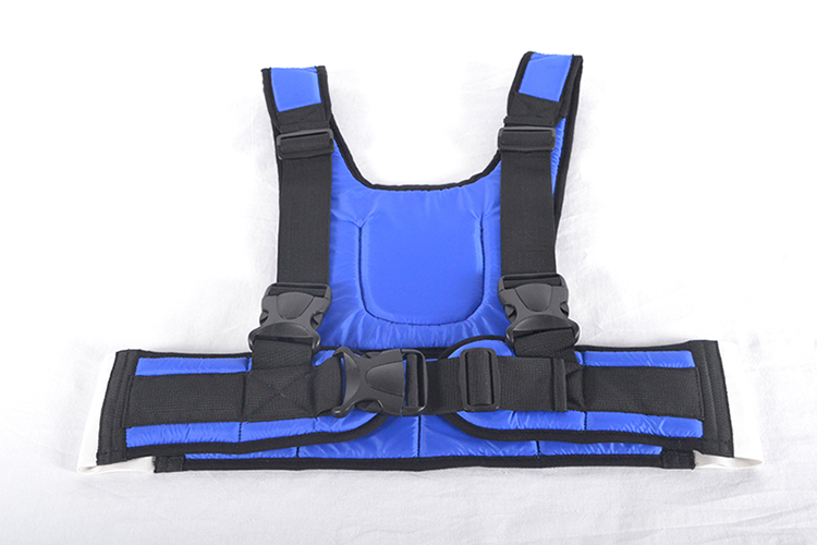 Wheelchair security constraint vest